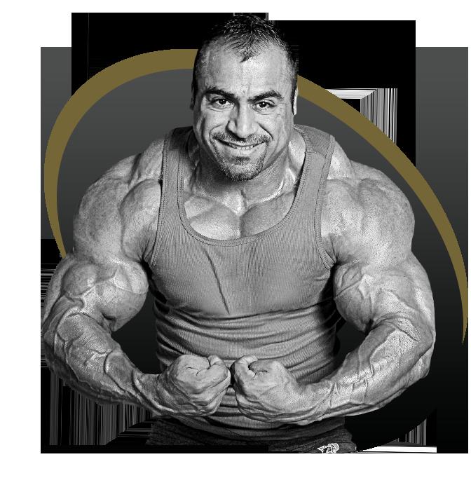 Superior14 Quatro protein team | FitnessMuscle.eu